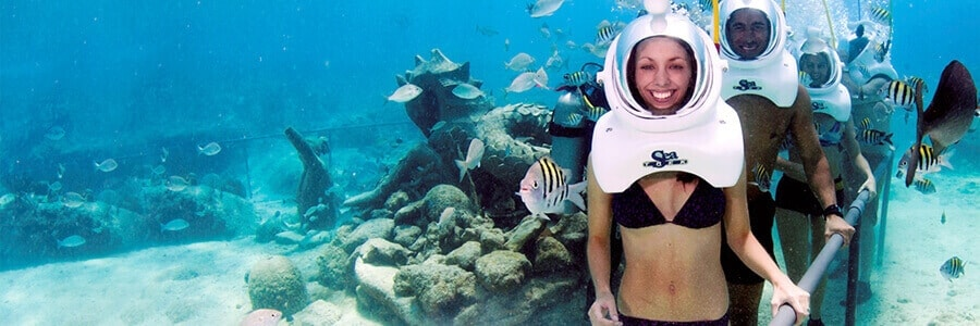 Sea Trek Cozumel – Tour Picture